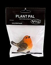Vivid Arts Plant Pal Range - Robin