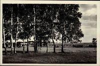 Franzensbad Františkovy Lázně Tschechien AK ~1940 Birken Baum u. Landschaft Dorf