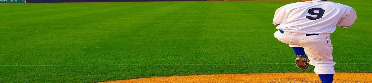 ballparkgradedcards