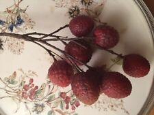 Litschizweig, Frucht, Früchte, Dekofrüchte, Tischdeko, Dekoration, Küche