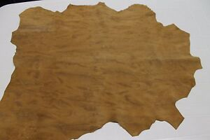 Italian thick Goatskin leather skin SUEDE MUSTARD CAMEL DISTRESSED 5sqf #A2081