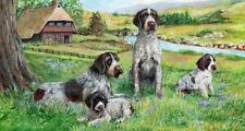 German Wirehaired Pointer Wallet