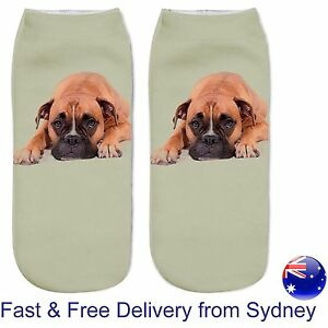 Boxer dog socks -  low cut puppy loyal dogs box canine novelty present sock gift