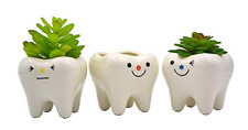 Monmob Pack of 3 Mini Shaped Planter Ceramic Succulent Plant Pots Set Small for