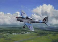 De Havilland Chipmunk Aviation Painting Art Print - Central Flying School