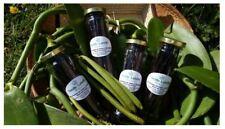 Bocal 20 gousses de Vanille Bourbon de Madagascar Gourmet