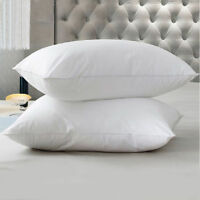 White Luxury 65cm x 65cm Square Euro Continental Deluxe Bounce Microfibre Pillow