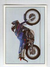 figurina SUPER MOTO PANINI NUMERO 169