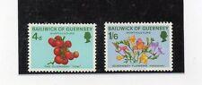 Guernsey flores y frutos año 1970 (U-82)
