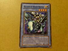 YU-GI-OH CARD / PALADIN OF WHITE DRAGON: SKE-024 (YUGIOH)