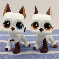 Littlest Pet Shop Hasbro 577 750 LPS White Flower Great Dane Dog Kid Puppy Gift