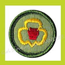 Girl Scouts Badges 1960s for sale | eBay
