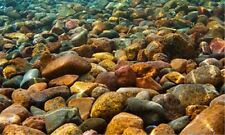 River Rocks 3D Aquarium Background - 24 in. x 16 in. - 20 gal - LB3 - Penn Plax