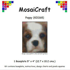 "Mosaicraft Pixel Craft Mosaïque Kit ""Coquelicot"" CAVALIER KING CHARLES PUPPY pixelhobby"