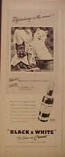 1941 Scottish Terrier West Highland Westie BLACKIE~WHITEY Dogs Scotch Whisky Ad