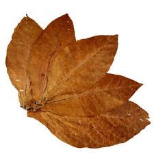 Tabakblätter der Sorte Burley 1kg