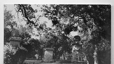 Visalia CA Cutler Park Printed Photo Postcard @1940