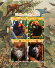 Guyana 2019 fauna  wildlife of South America , monkeys  I201901