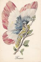 Pretty Lady  as Butterfly  with Wings of France