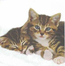 Lot de 2 Serviettes en papier 2 chats Decoupage Collage Decopatch