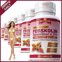 FORSKOLIN CAPSULES EXTRACT FAT BURNER WEIGHT LOSS DIET COLEUS FORSKOHLII PILLS