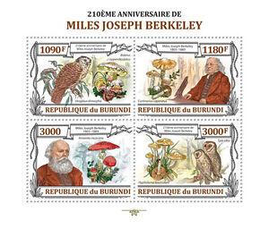 M.J. Berkeley Owls birds m/s Burundi Sc.1355 MNH #BUR13202a