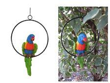 20cm Rainbow Lorikeet Parrot Bird on Metal Swing Ring - Outdoor Garden parot