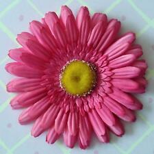 "5"" Bright Pink Gerbera Daisy Silk Flower Hair Clip"