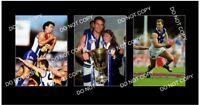WAYNE CAREY NORTH MELBOURNE FC 3 8x6 LARGE PHOTOS