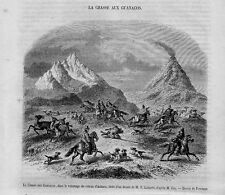 Stampa antica Caccia al GUANACO in Cile Chile 1858 Old Print