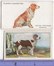 Welsh Springer Spaniel Dog 2 Different Vintage Ad Trade Cards #3 Canine Pet