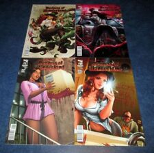 MADNESS of WONDERLAND ongoing #1 2 3 4 A set GRIMM FAIRY TALES zenescope SEXY NM