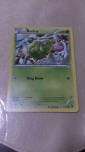 Burmy Pokemon Card COMMON [FATES COLLIDE]