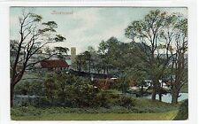 ROSEMOUNT near COCKBURNSPATH: Berwickshire postcard (C25583)
