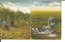 CUTTING SUGAR CANE & SUGAR REFINERY 1942
