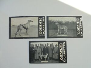 Ogdens Tabs cards Notable coursing dogs x3