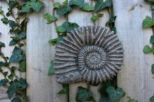 E propria Ammonite Fossile, Pietra Muro Decorazione Ornamento, casa e giardino, Cornovaglia STONEWARE
