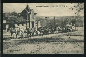 NM Silver City ALBERTYPE PC 1910's MOUNTAIN FREIGHTER Wagons & Horse Team