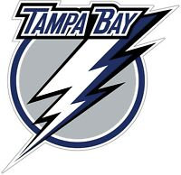 Tampa Bay Lightning NHL Color Die Cut Vinyl Decal Sticker Choose Size cornhole