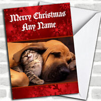 Dog And Kitten Sleeping Christmas Customised Card