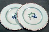 Vintage Salad Plate, Pfaltzgraff Garden Grove Salad Plates, Set of 2 Plates