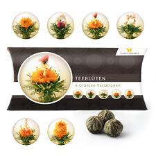 6 Teeblumen Geschenkbox - Grüntee Variationen Geburtstag Geschenk Tee Blüten