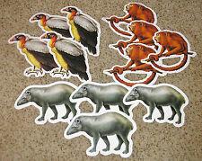 Teacher Resource: 12 Jungle / Rainforest Animal Bulletin Board Accents