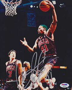 Dennis Rodman SIGNED 8x10 Photo + 91 Chicago Bulls PSA/DNA AUTOGRAPHED