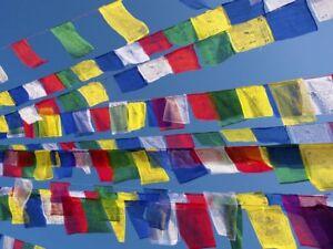 5 String Packs - Tibetan Buddhist Prayer Flags Wind Horses  - Made In Nepal ॐ