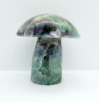 Rainbow Fluorite Mushroom 166 g 62 mm Cleansing Healing Crystal Gift Boxed