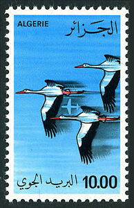 Algérie C19, MNH Aérien Post. Oiseaux : Storks. Plat, 1979