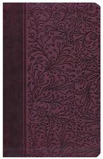 Reina Valera 1960 Biblia Clasica Edicion Especial: Ruby