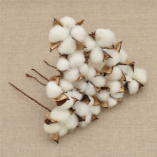 10x Natural Cotton Dried Flowers Heads Branch DIY Craft Wedding Party Decoration