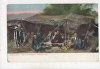 Bedouin Tent Israel Vintage U/B Postcard 340b
